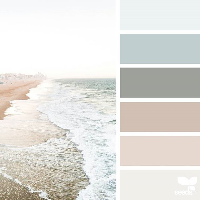 today's inspiration image for { color shore } is by@lisaridgelyphotography... thank you, Lisa, for generously sharing your incredible photos in #SeedsColor !