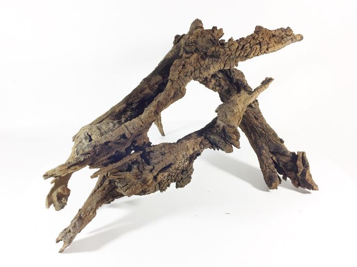 "23""Wx15""Dx12""H Large Oak Driftwood for Aquarium blackwater Biotope holes by Suwanneeriverco on Etsy https://www.etsy.com/listing/497318051/23wx15dx12h-large-oak-driftwood-for"