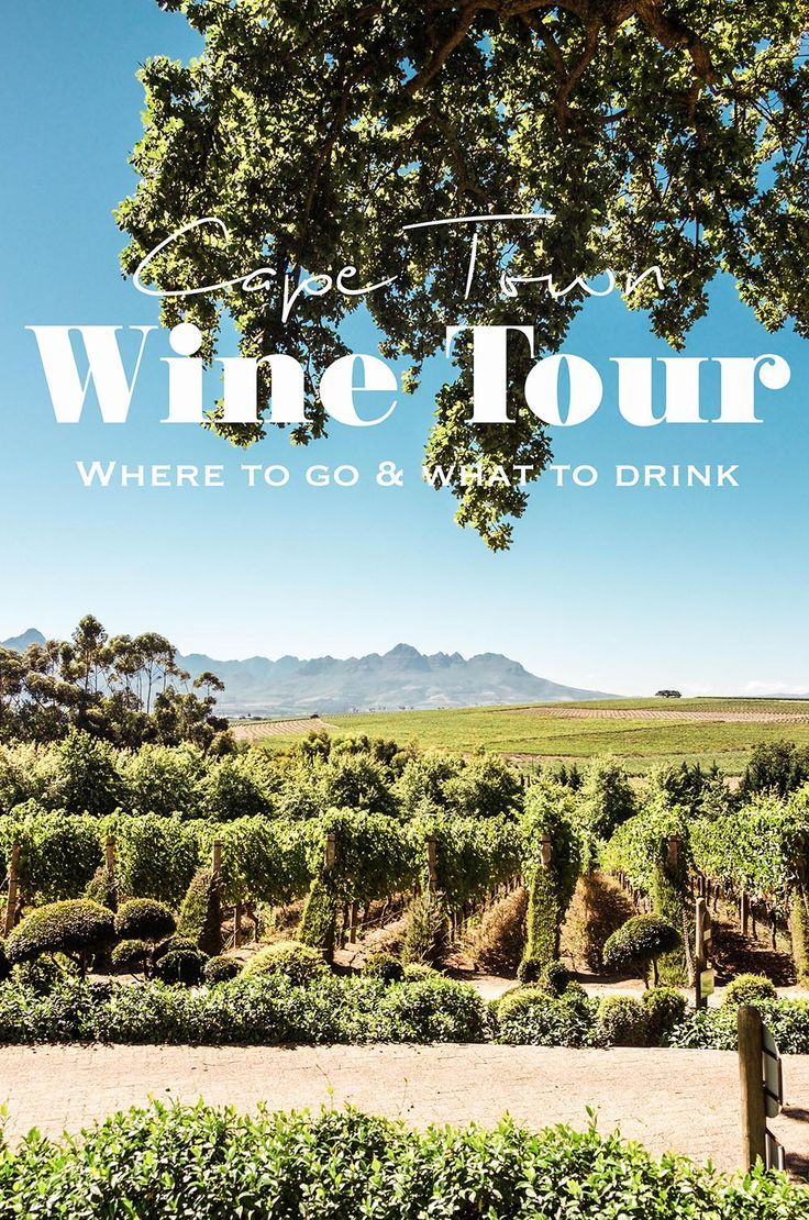 Looking for a great Cape Town wine tour that will let you taste the best of South African wine? Join a private tour through the Winelands and see some of the best wine farms in Stellenbosch and Paarl for wine tasting. #winetastingSA #visitcapetown #stellenbosch #paarl #southafrica #capetown