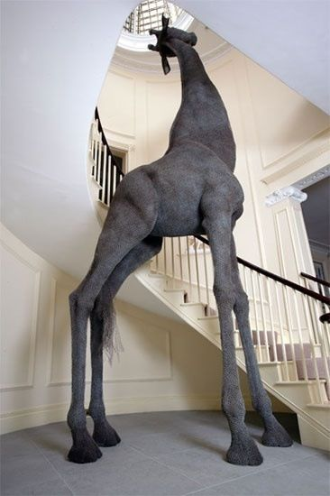 In my life time I will own a home with a huge/ tall stairway, this giraffe will be in the middle of it!! IN LOVE!!!