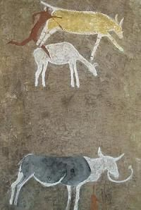 Bushman rock art Nguni