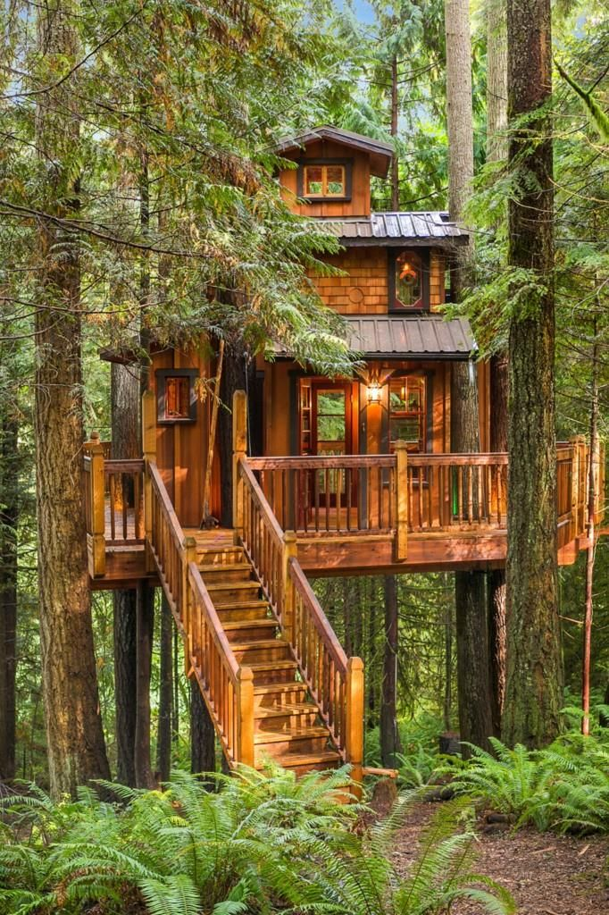 Tree house (plus normal one) for sale in Woodinville