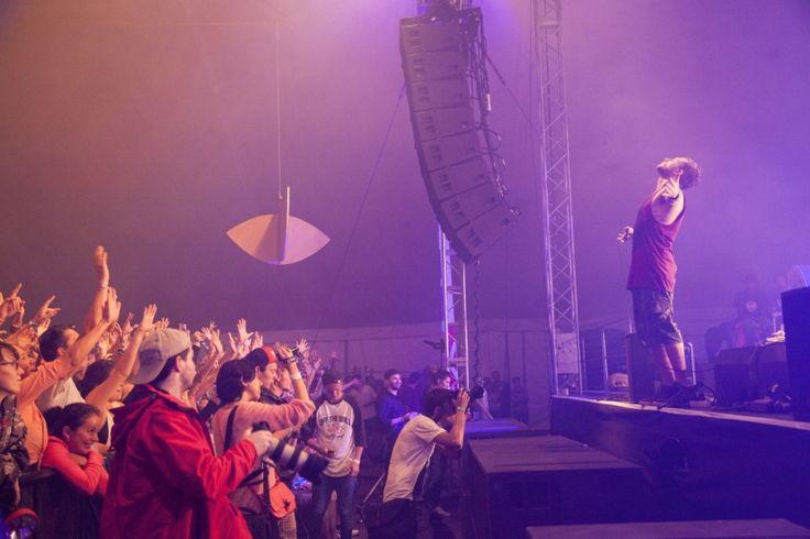 concert, gig, music festival, grape festival