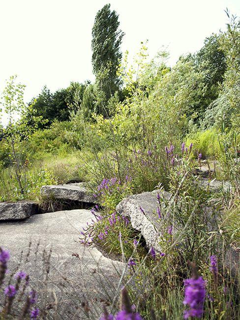 Alter_Flugplatz_Kalbach-Frankfurt_am_Main-GTL_Landschaftsarchitekten-07 « Landscape Architecture Works | Landezine