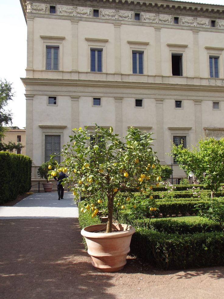 The Italian corridor leading us towards the dream of preserving an ancient knowledge of healing skin recipes http://erbeitalianskincare.blogspot.it/2014/05/the-italian-corridor-leading-us-towards.html