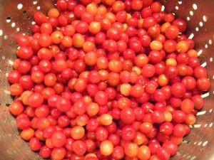 {Recipe} Nanking Cherry Pancake Syrup