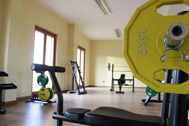 La Palestra 4 - The Gym 4