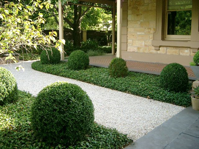 Gravel path edged by vinca with sculpted boxwood bubbles for Low maintenance gravel garden