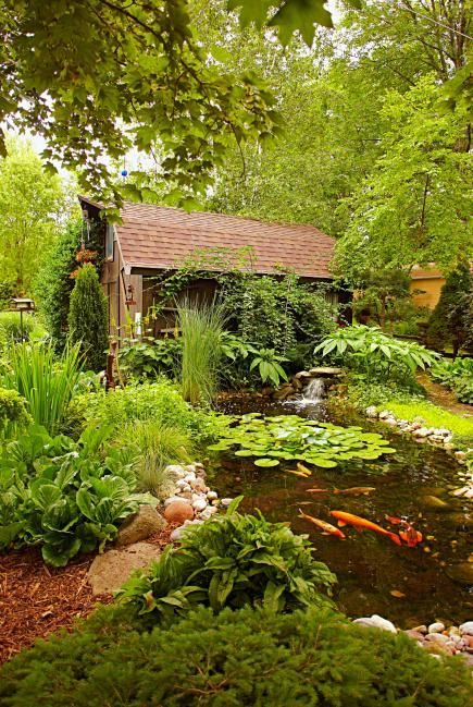How serene is this backyard pond? Remember: mosquitoes love still water so add a mini-waterfall feature to keep the water flowing, or add some mosquito fish to the pond!