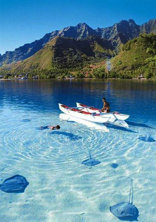Bora Bora, French Polynesia in an outrigger canoe...bliss! Look at the sting rays!