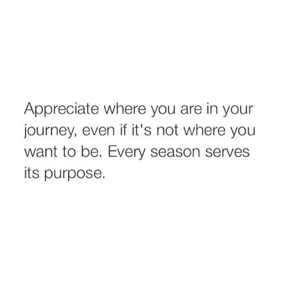 Appreciate where you are in your journey, even if it's not where you want to be. Every season serves its purpose.