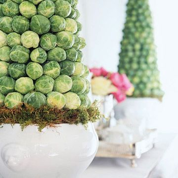 Brussels sprouts topiaries... the only thing brussel sprouts are good for!
