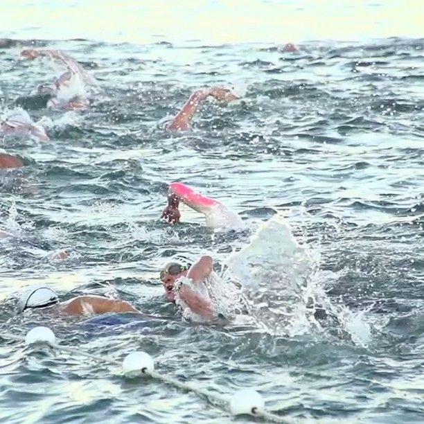 Lovely morning for a swim!   #ExperienceKarma  #KarmaResortsRottnestChannelSwim #KarmaGroup #KarmaResorts #KarmaRottnest #Rottoswim #westernaustralia