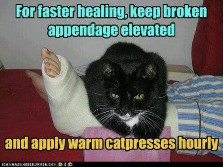 Funny Meme For Broken Heart : 12 best injury memes images on pinterest broken leg broken foot