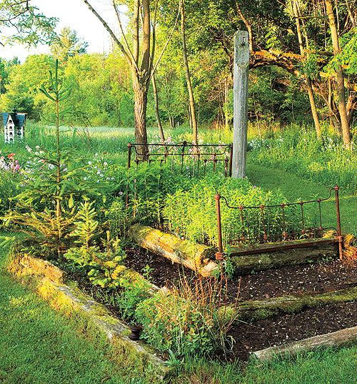 planting in a wrought-iron bed frame