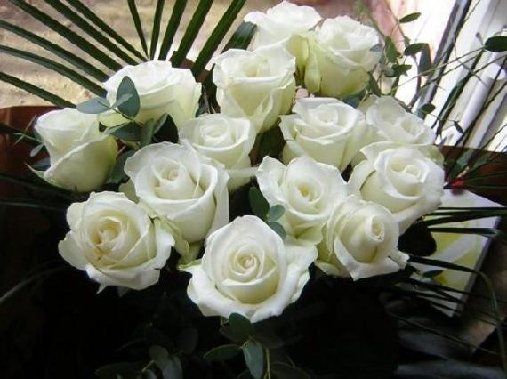 Rózsák - rozsa.lapunk.hu