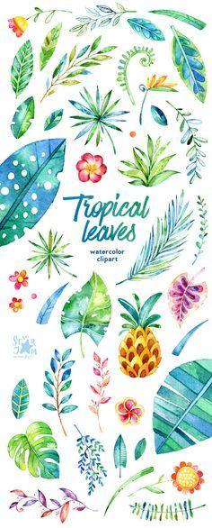 Foglie tropicali. 44 elementi floreali clipart