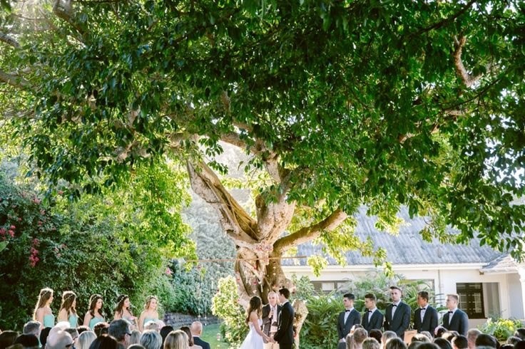 All I wanted was to get married outside under a big tree.  Photo: Lad & Lass