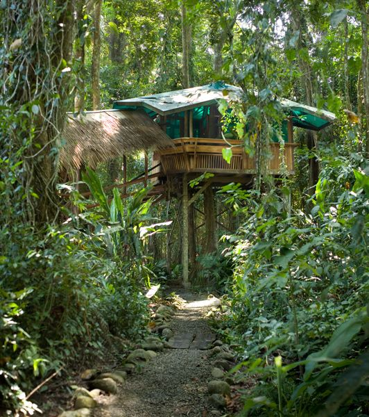 Treehouse Lodge, Limon, Costa Rica