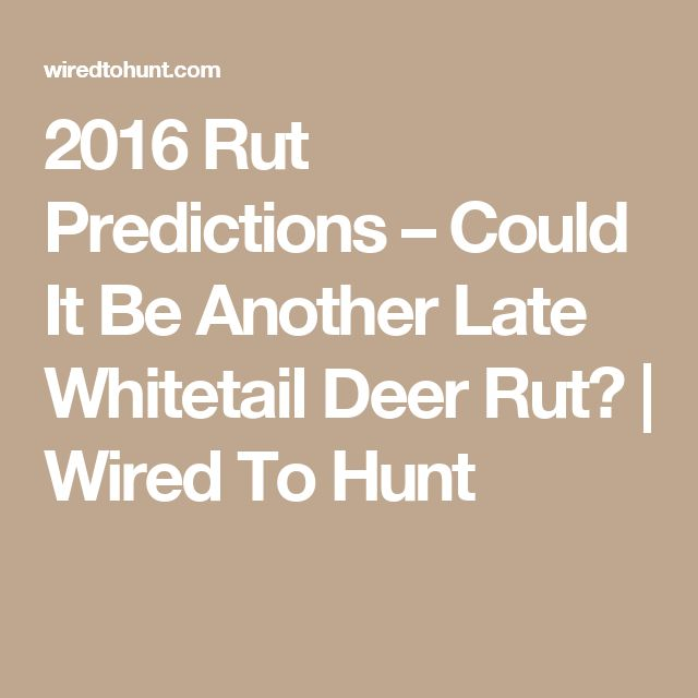 2016 Rut Predictions – Could It Be Another Late Whitetail Deer Rut? | Wired To Hunt