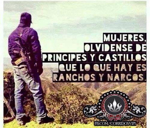 Ranchos y narcos