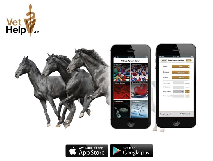 ¿Sabías que con Vethelp AM puedes estimar el peso de un caballo y de otras especies sin necesidad de una balanza?  Descubre este y otros beneficios que esta APP te puede brindar. Clic en la imagen para conocer más de Vethelp AM.