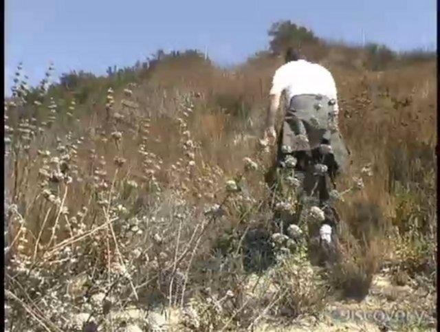 man vs wild mp4 videos free