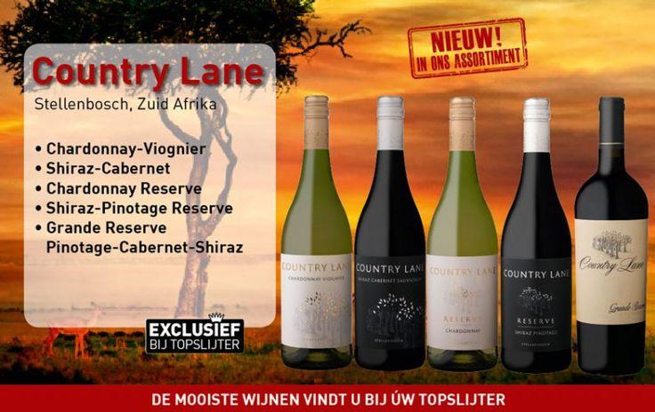 Een mooie laan met aan weerszijden wijngaarden en bomen, leiden naar het landhuis van de familie Rabie. Het uitzicht op de Helderberg, net ten zuiden van Stellenbosch, is prachtig. Als het helder is, zie je de oceaan. Hier liggen de 80 ha wijngaard waar de Country Lane wijnen vandaan komen.