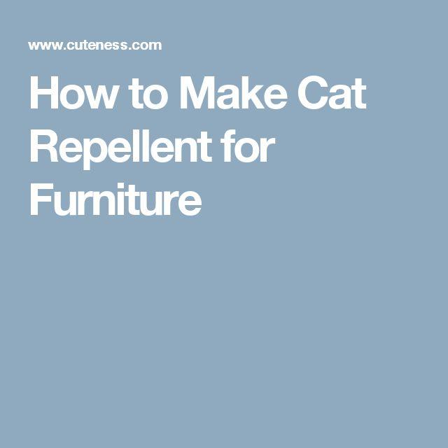 Best 25+ Cat Repeller Ideas On Pinterest | Natural Cat Repellant, Cat  Repellent For Garden And Cat Deterrent Spray