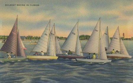 Vintage Florida Postcard Sailboat Racing -