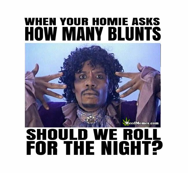 Rolling Blunts Weed Memes | Dave Chappelle Pothead Humor | Rick James Funny 420 Memes | Roll Blunts Funnies How many blunts do you and your homies roll when you're getting ready for a night of