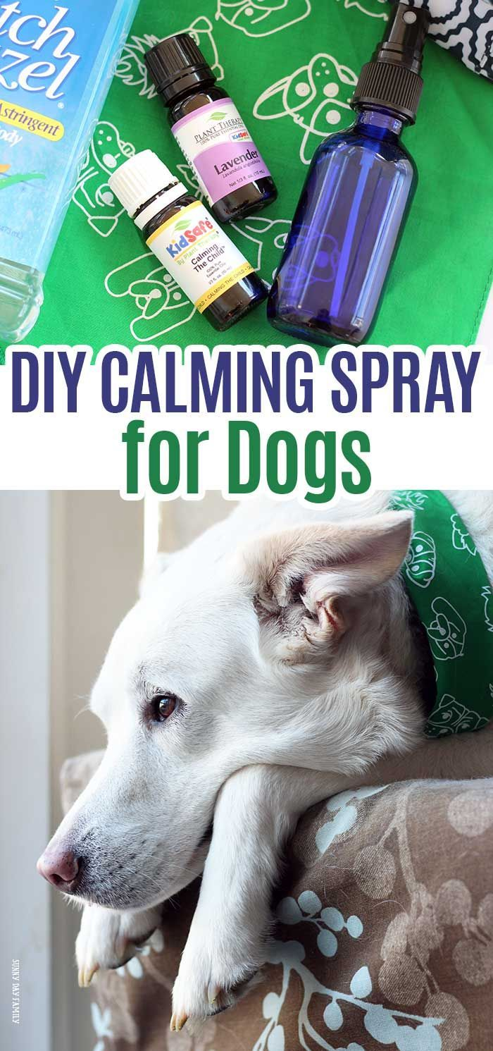 721 best dog care boarding images on pinterest dog kennels dog diy dog calming spray with free printable bottle labels solutioingenieria Choice Image