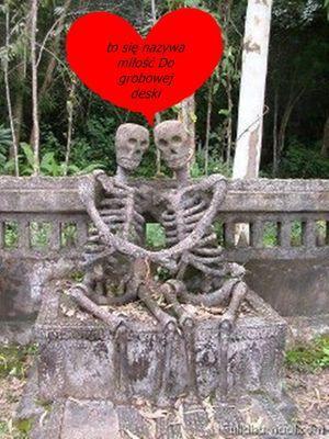 to się nazywa miłość do grobowej deski