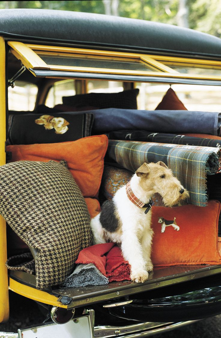 He may travel in the boot but his comfort is ensured. English country plaids and houndstooth by Ralph Lauren Home fabric.