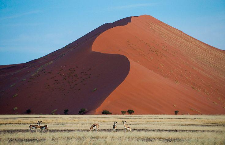 Big Daddy Dune in Sossusvlei. Little Kulala, Sossusvlei, Namibia. @ Wilderness Safaris