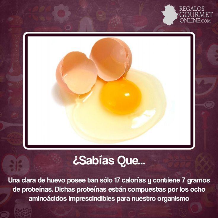 ¿#SabíasQue Una clara de huevo posee tan sólo 17 calorías y contiene 7 gramos de proteínas? #Curiosidades