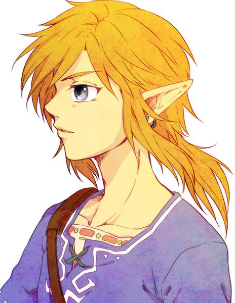 The colours are gorgeous, his hair is flowing, it's golden, and he's wearing blue to match his eyes. He's captured my heart since I first played Zelda.