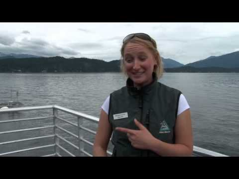 Alaska Cruises | Alaska Vacation Packages | Norwegian Cruise Line