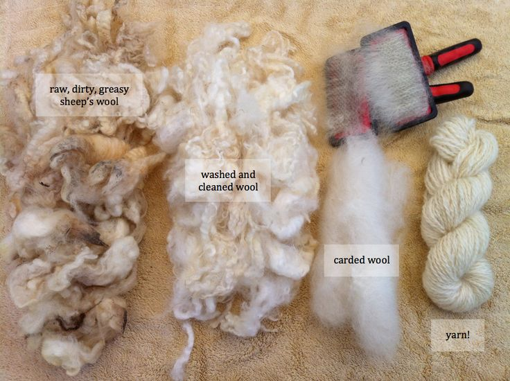 Processing Raw Fleece | Crafty Katie
