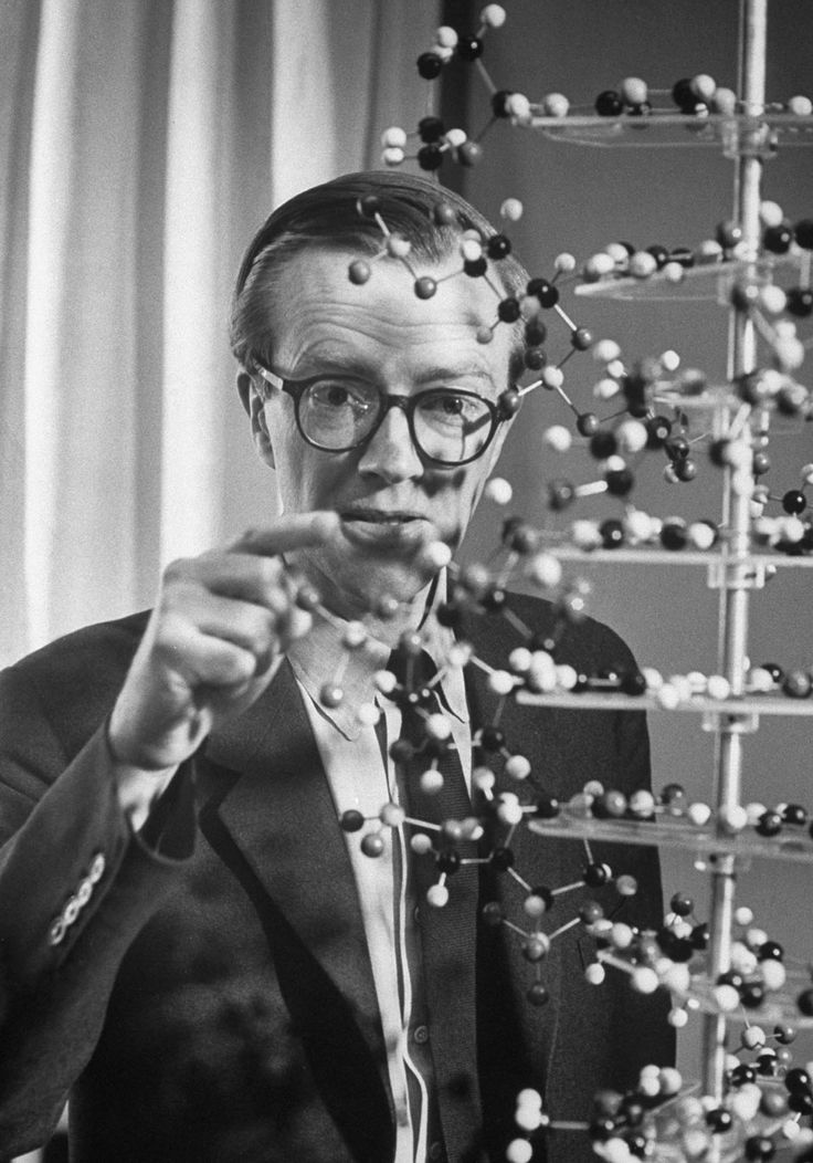 Maurice Wilkins, 1962 Nobel Prize for Medicine with Watson and Crick.
