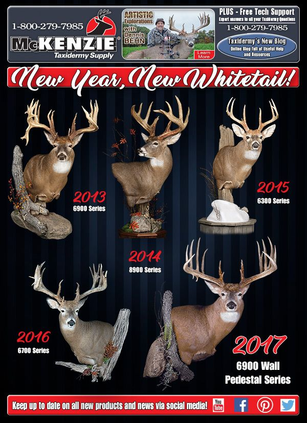 McKenzie #Taxidermy Supply Announces A New Whitetail For A New Year!
