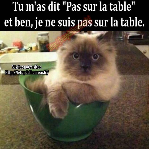 Je ne suis pas sur la table.
