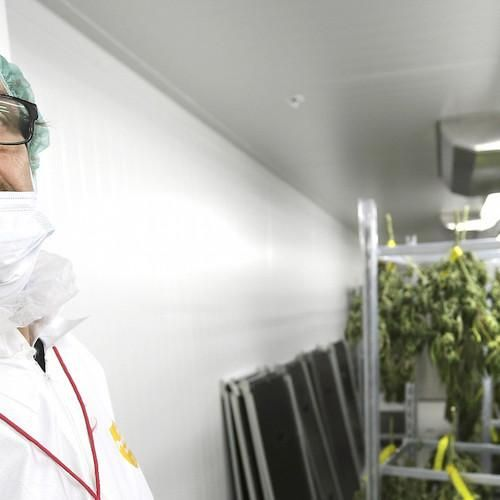 Why It Matters that the Feds Are Opening the Doors for Weed Science