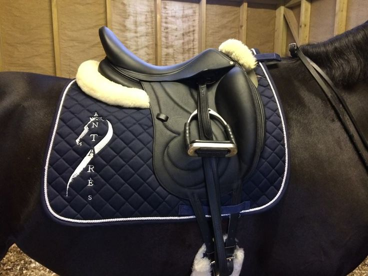 Antares Dressage Saddle