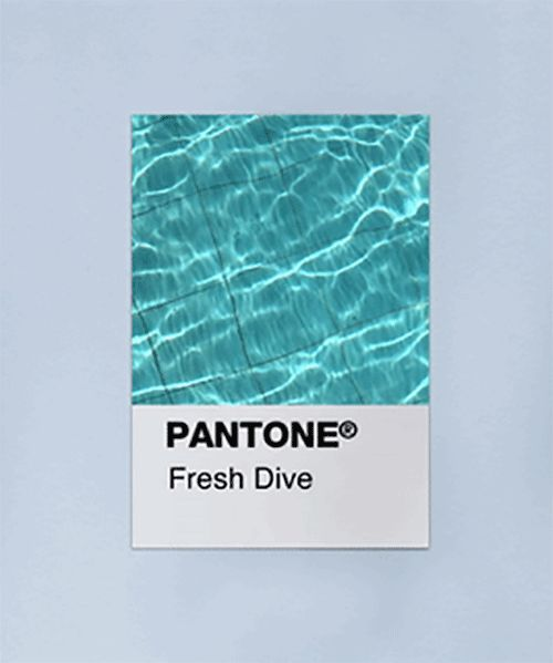 animated pantone swatches channel coastal colorways and summertime vibes