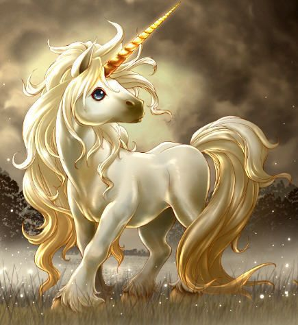 licorne - unicorn