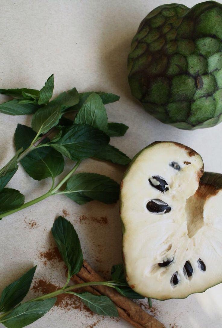 Guanabana deliciosa fruta rica en vitamina C capaz de hacer las veces de una quimioterapia en caso de cáncer y sin efectos secundarios.