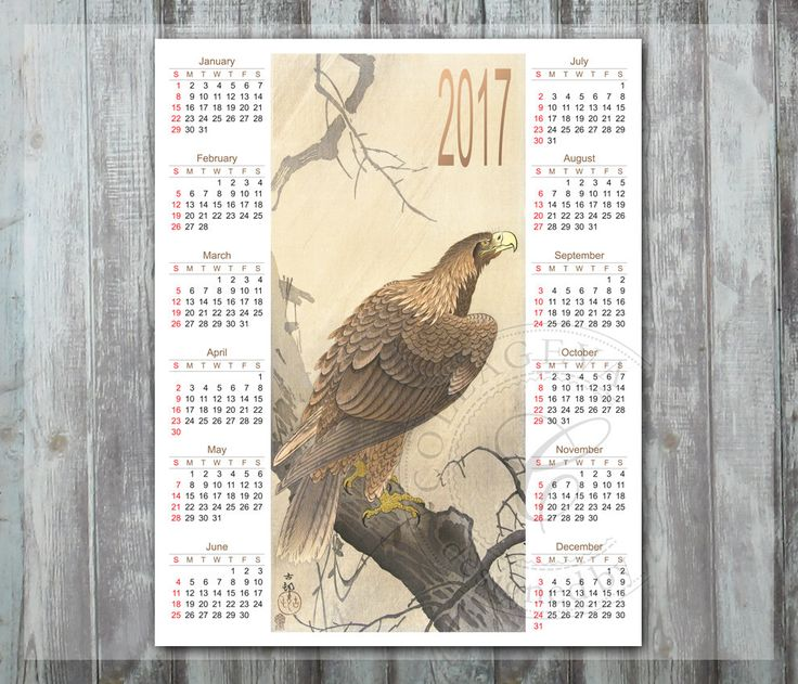 "2017 Digital Calendar, Printable Year Calendar, 8x10"" PDF JPEG DIY Wall art, Eagle Watercolor bird, nature brown, Instant Download (C014-17) by collageva on Etsy"