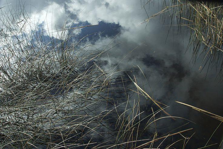 https://flic.kr/p/xeVuq3 | Nubes en el humedal | Punucapa
