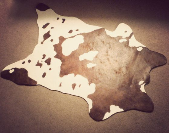 Fake cow hide rug!  I'll find some faux cow hide fabric to use, instead...